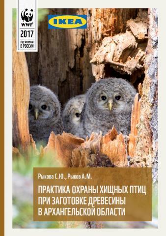 Практика охраны хищных птиц при заготовке древесины в Архангельской области
